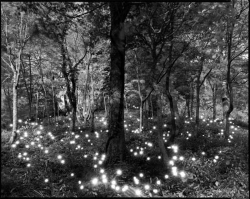 Tokihiro Sato photography - Gelatin silver print
