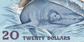 Art on money